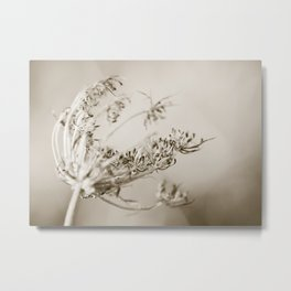 Where the strong winds blow Metal Print