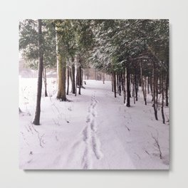 Snow Prints Metal Print