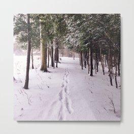 Snow Prints Metal Print