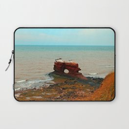 Unique Sandstone  Formation and the Birds Laptop Sleeve