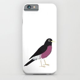 Rocking Robin iPhone Case