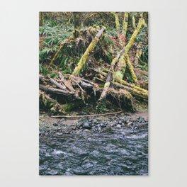 Oregon 6 Canvas Print