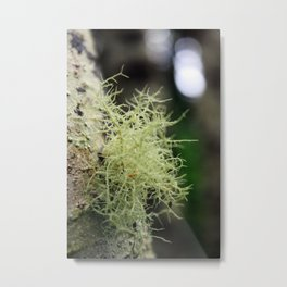 Filaments Metal Print