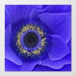 Blue Annie Canvas Print