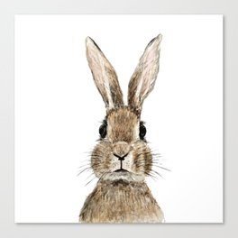 cute innocent rabbit Canvas Print