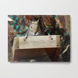 Swinging lunchtime Metal Print