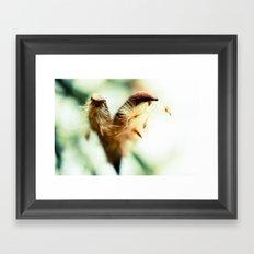 Maybe Love Framed Art Print