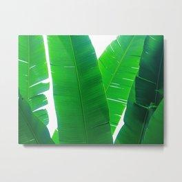 Plant collage VI Metal Print