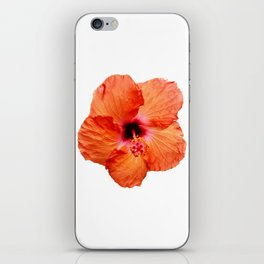 Just the Hibiscus iPhone Skin