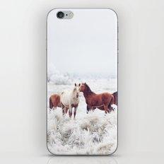 Winter Horseland iPhone Skin