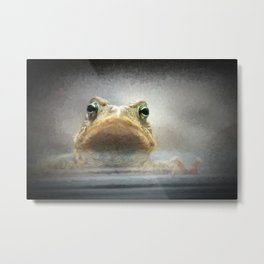 Frog from Front Painting Style Metal Print