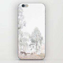 Zebras - through the mist iPhone Skin