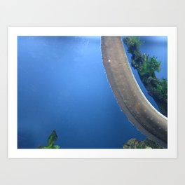 Electric Eel 1 Art Print