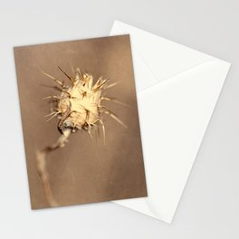 Real World Stationery Cards