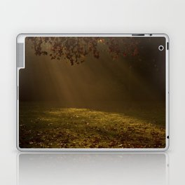 Sunbeams shining through Trees Laptop & iPad Skin