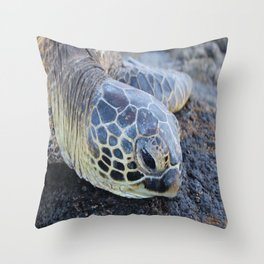 Turtle 3 Throw Pillow