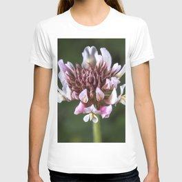 Red Clover Flower T-shirt