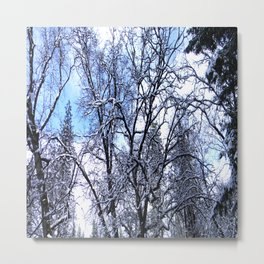 Winter in my yard... Metal Print