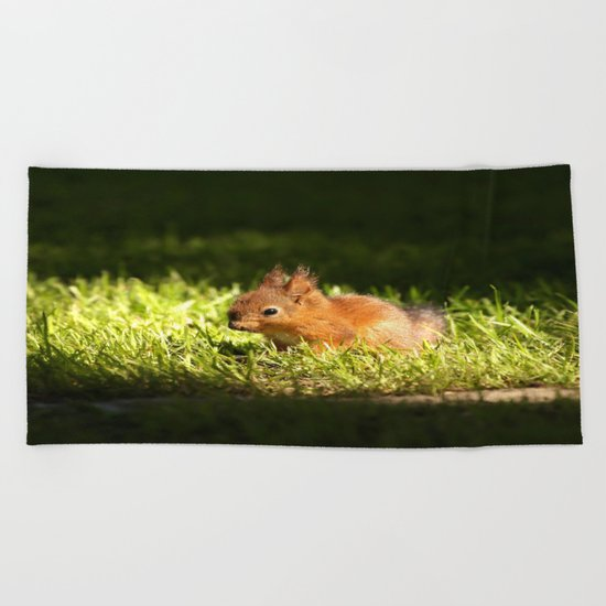 Cute Squirrel Cub  Beach Towel