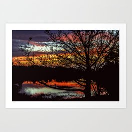Halibut Point Sunset Art Print