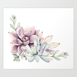 Desert Succulents on White Art Print
