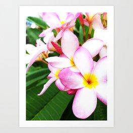 Tipsy Flowers in the Sun Art Print
