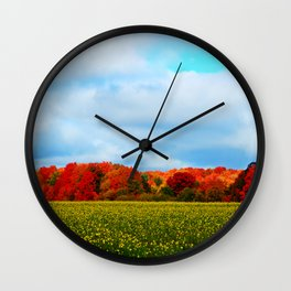 Light hits the Trees Beyond Wall Clock