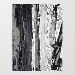 Rainbow Eucalyptus Graffiti artist tree from shedding bark South Pacific Black and White Night Poster