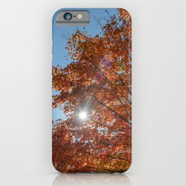 As the leaves turn iPhone Case