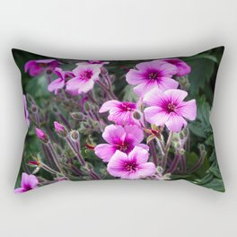 Beauty on The Rock Rectangular Pillow