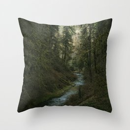 Oregon Forest V Throw Pillow