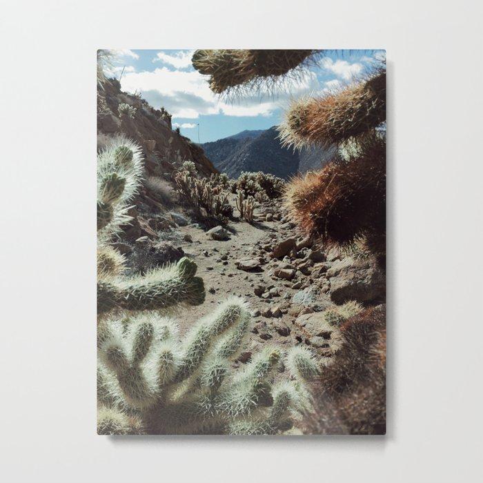 Cholla Frame Metal Print