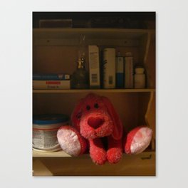 Red Dog Kept On A Shelf Canvas Print