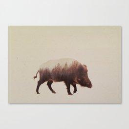 Wild Boar (Veluwe V3 Canvas Print