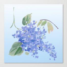 blue lilac Canvas Print