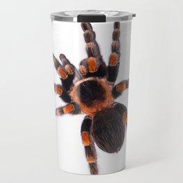 Mexican redknee tarantula (Brachypelma smithi) Travel Mug