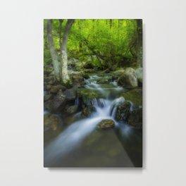 Hidden forest waterfall Metal Print