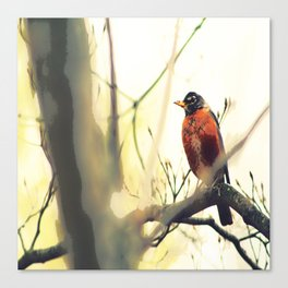 Robin in the Fall Painting Canvas Print