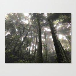 Tropical Jungle - Palm Trees Canvas Print