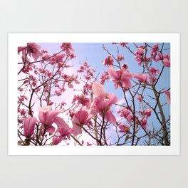 Magnolia's Art Print