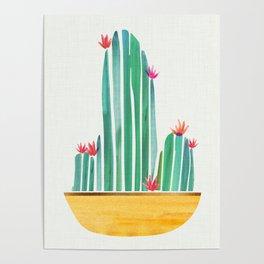 Tiny Cactus Blossoms Poster