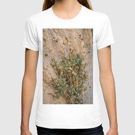 Mexico Mountainside T-shirt