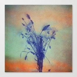 Small Beauties of Nature Canvas Print