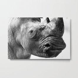 Rhinoceros closeup portrait. Metal Print