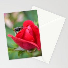 Fly on Knockout Stationery Cards