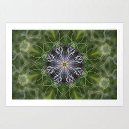 Nigella Plant 1 Art Print