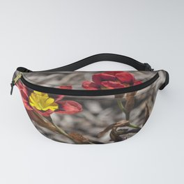 Little Sparaxis Fanny Pack