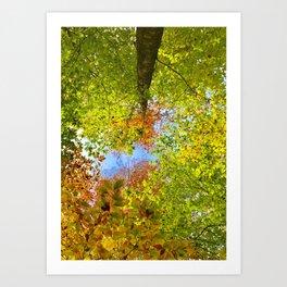 Transcendence Art Print