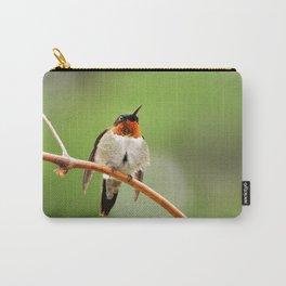 Hummingbird XVII Carry-All Pouch