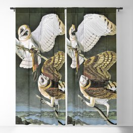 15,000px,600dpi-John James Audubon - Barn Owl - Digital Remastered Edition Blackout Curtain